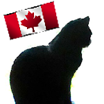 Canadian pet food safety and regulation information and links